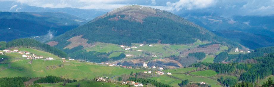 Valle de Aramaio - Arándanos Atxineta